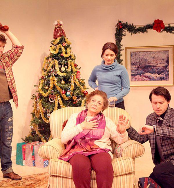 a_nice_family_christmas20